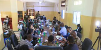 Somaliland, Ethiopia Discuss Strengthening Security, Military Cooperation
