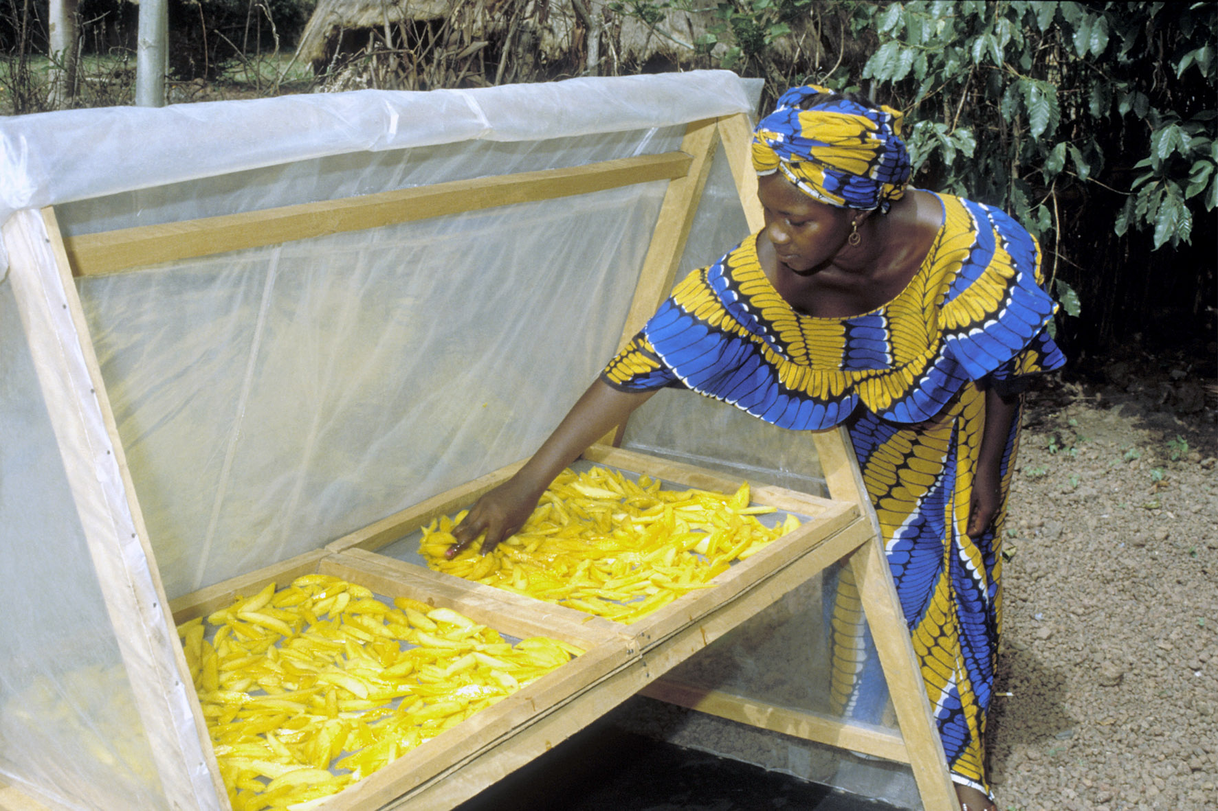 Food losses increase during COVID-19, a major hurdle to Africa's development