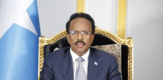 Somalia committed to promoting democracy, accountability despite COVID-19 challenge