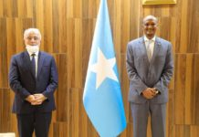 Somalia Acting PM Meets With Turkish Ambassador