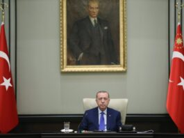 President Recep Tayyip Erdoğan poses ahead of a cabinet meeting in Ankara on Tuesday, Oct. 20, 2020 (AA Photo)