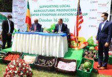 Ethiopian Airlines signs partnership agreement with USAID