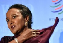 Ms Amina Mohamed, Kenya's candidate in the race to head the World Trade Organisation. File | Nation Media Group