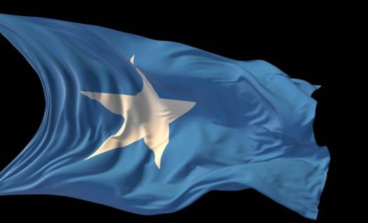 Somalia national flag day