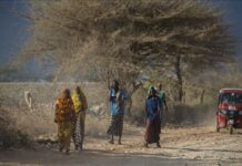 Somalia: 2.1 million people expected to face acute hunger