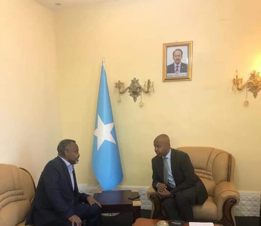 Somalia Foreign minister consults with the country's ambassador to Kenya
