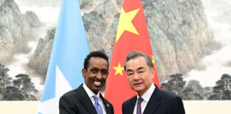 China, Somalia ready to push bilateral ties to new highs: FMs