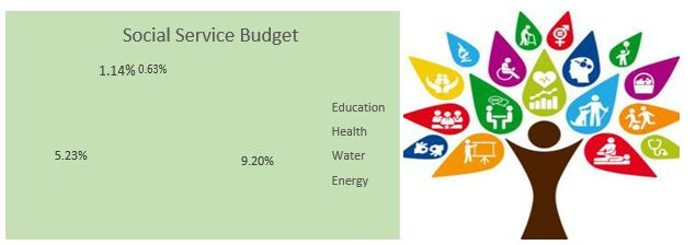 Figure 12 Social service budget