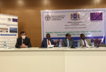 Somalia:EU launches project Resilient Fisheries and Livestock Value Chain for Inclusive and Sustainable Growth