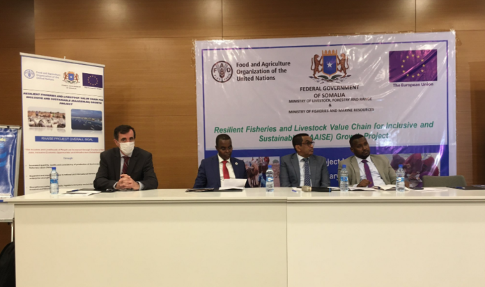 Somalia:EU launches projectResilient Fisheries and Livestock Value Chain for Inclusive and Sustainable Growth
