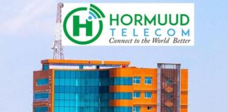Hormuud Telecom awarded Somalia's first mobile money licence