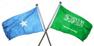 Saudi, Somalia envoys discuss OIC cooperation