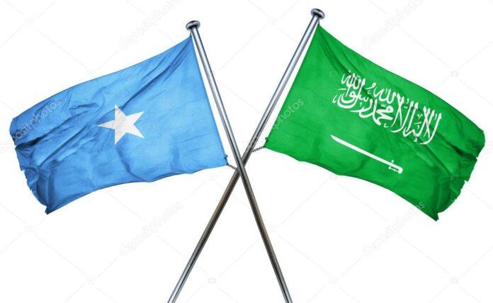 Saudi, Somalia envoys discuss OIC cooperation
