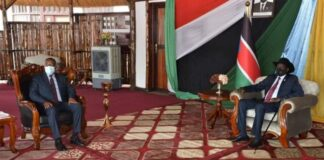 Ethiopia, South Sudan Pledge To Scale Up Bilteral Ties, Cooperation On Regional Stability