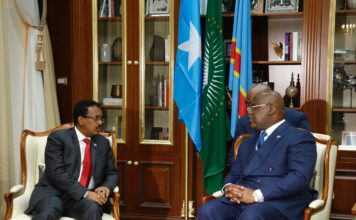 Somalia , Congo presidents discuss regional developments