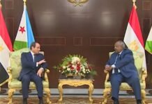 Egypt's President Abdel Fattah Al-Sisi arrived in Djibouti, on Thursday, to meet his Djiboutian counterpart Ismail Omar Guelleh.