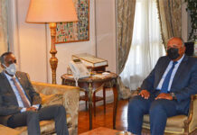 Egypt's Foreign Minister Sameh Shoukry during his meeting with Somalia's Prime Minister Mohamed Roble on Tuesday, August 17,2021. Photo courtesy of Egyptian foreign ministry Twitter account
