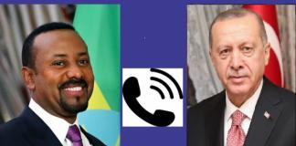 Turkey's Erdoğan discusses bilateral ties with Ethiopian PM Abiy