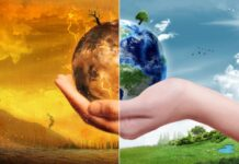 Climate scientists and energy researchers at Stanford documented the devastating effects of climate change on the world and developed technologies to help reduce carbon emissions. (Image credit: ParabolStudio / Shutterstock