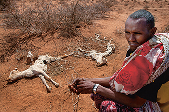 Sahal Dhicle Samatar, one of many pastoralists heavily affected by Somaliland's droughts, pictured beside two dead goats in Burao, Togdheer, Somaliland. TOM PILSTON/PANOS
