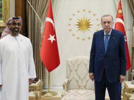 Turkish president receives UAE's national security adviser