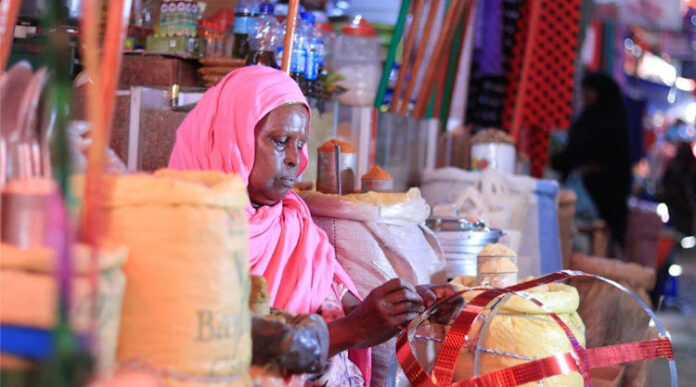 Fauzia Mohamoud a her shop in the outskirts of Somaliland capital of Hargeisa/HANDOUT